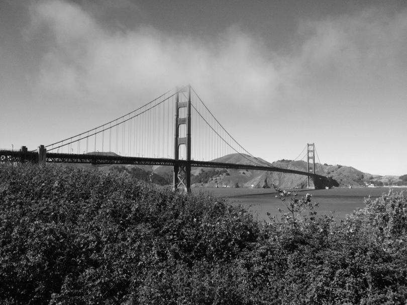 black and white shot of the golden gate bridge san francisco