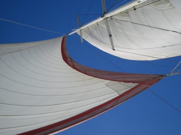 the sails of a boat show from below against a clear blue sky
