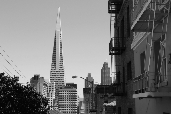 black and white shot of the transamerica pyramid san francisco